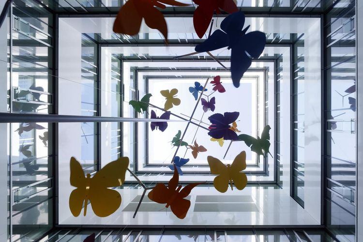 Interior view of atrium with butterflies